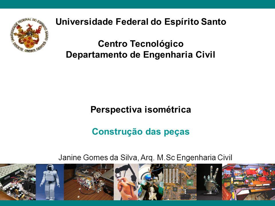 Universidade Federal do Espírito Santo Centro Tecnológico Departamento de Engenharia Civil Perspectiva isométrica Construção das peças Janine Gomes da