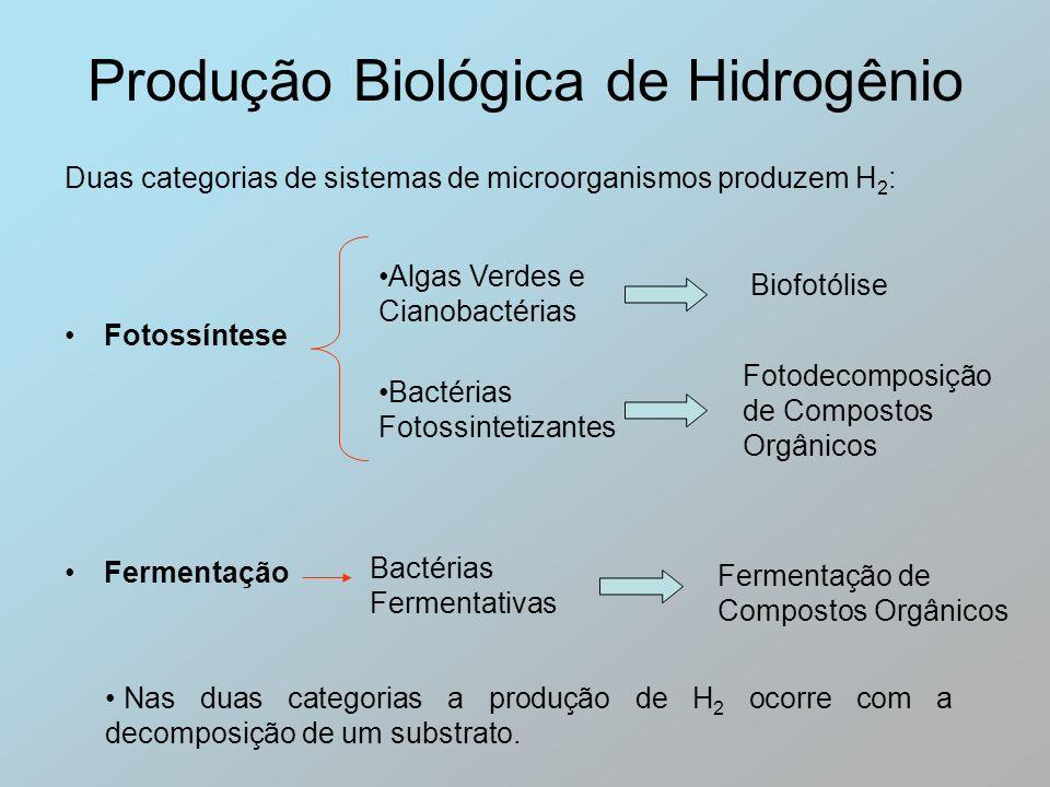 Produção Biológica de Hidrogênio Fotossíntese Algas Verdes e Cianobactérias Biofotólise Bactérias Fotossintetizantes Fotodecomposição de Compostos Org