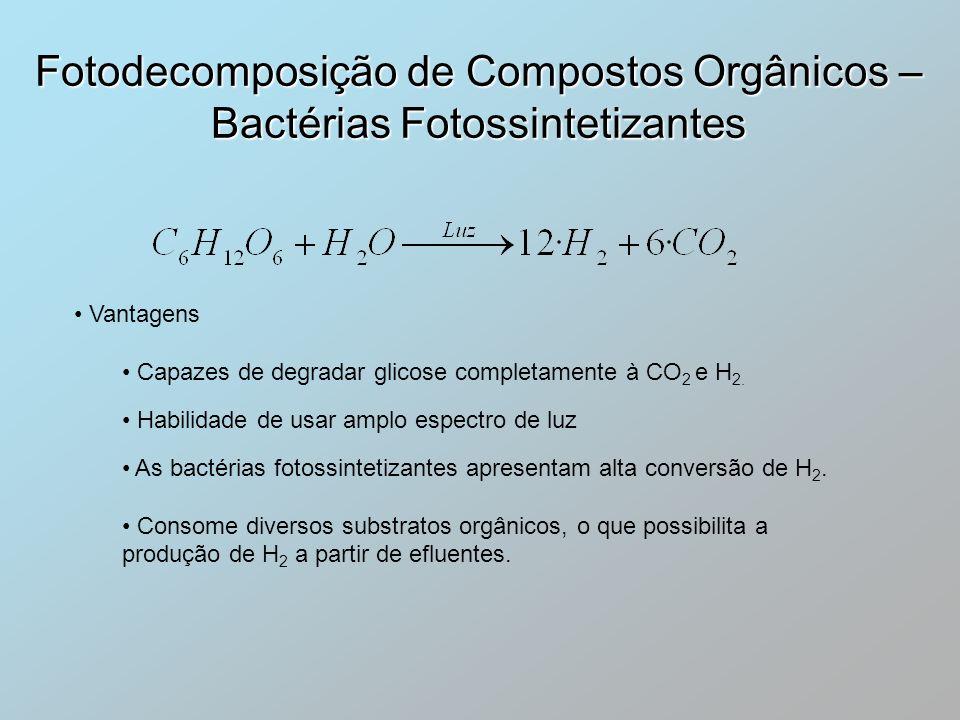 Fotodecomposição de Compostos Orgânicos – Bactérias Fotossintetizantes Vantagens Capazes de degradar glicose completamente à CO 2 e H 2. Habilidade de