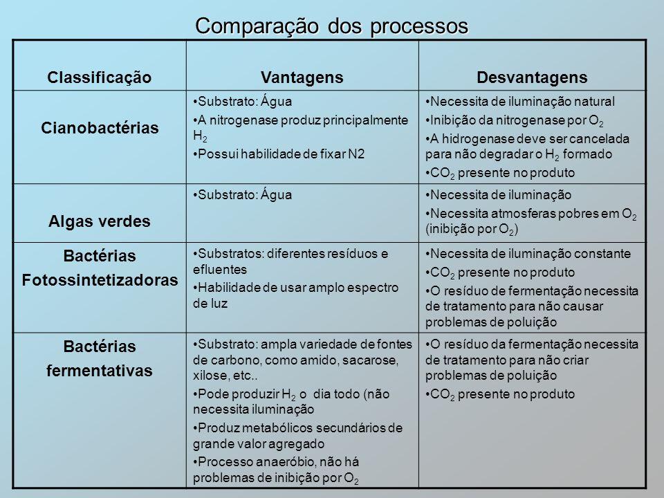 Comparação dos processos ClassificaçãoVantagensDesvantagens Cianobactérias Substrato: Água A nitrogenase produz principalmente H 2 Possui habilidade d