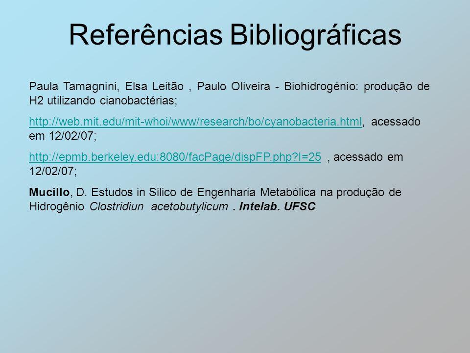 Referências Bibliográficas Paula Tamagnini, Elsa Leitão, Paulo Oliveira - Biohidrogénio: produção de H2 utilizando cianobactérias; http://web.mit.edu/