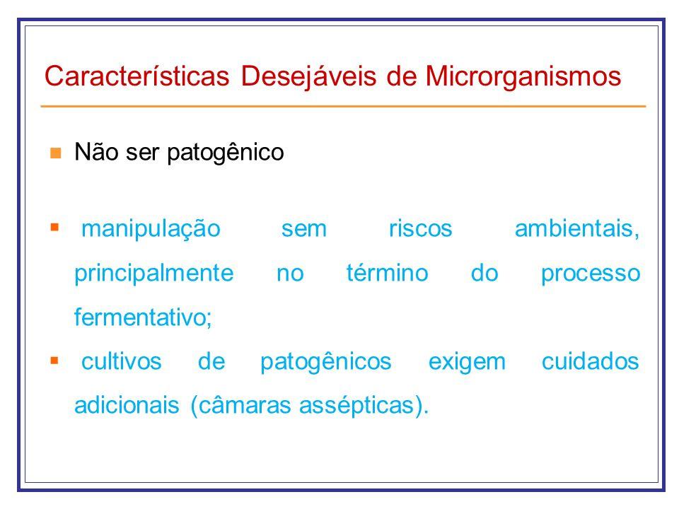 Características Desejáveis de Microrganismos Não ser patogênico manipulação sem riscos ambientais, principalmente no término do processo fermentativo;