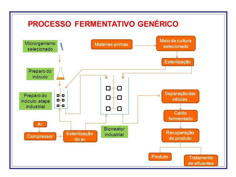 O sucesso de um processos fermentativo depende da correta definição de quatro pontos básicos: Microrganismo Meio de cultivo Forma de condução do processo Recuperação do produto Como estão interligados se define o conjunto levando em consideração aspectos econômicos e biológicos.