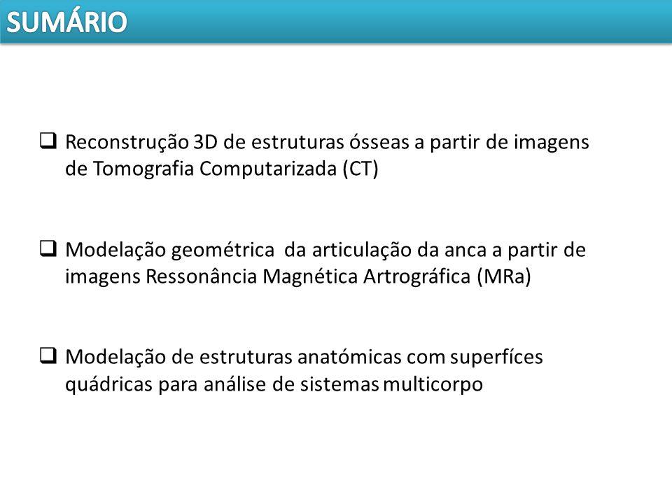 Reconstrução 3D de estruturas ósseas a partir de imagens de Tomografia Computarizada (CT) Modelação geométrica da articulação da anca a partir de imag