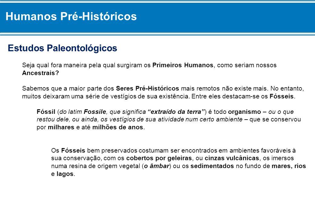 Estudos Paleontológicos Seja qual fora maneira pela qual surgiram os Primeiros Humanos, como seriam nossos Ancestrais? Sabemos que a maior parte dos S