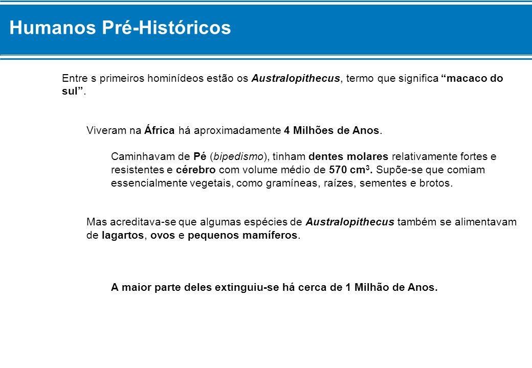 Humanos Pré-Históricos Entre s primeiros hominídeos estão os Australopithecus, termo que significa macaco do sul.