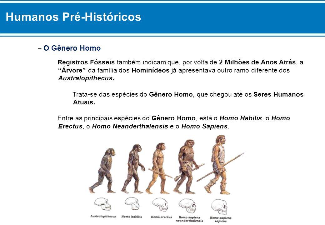 Humanos Pré-Históricos – O Gênero Homo Registros Fósseis também indicam que, por volta de 2 Milhões de Anos Atrás, a Árvore da família dos Hominídeos já apresentava outro ramo diferente dos Australopithecus.
