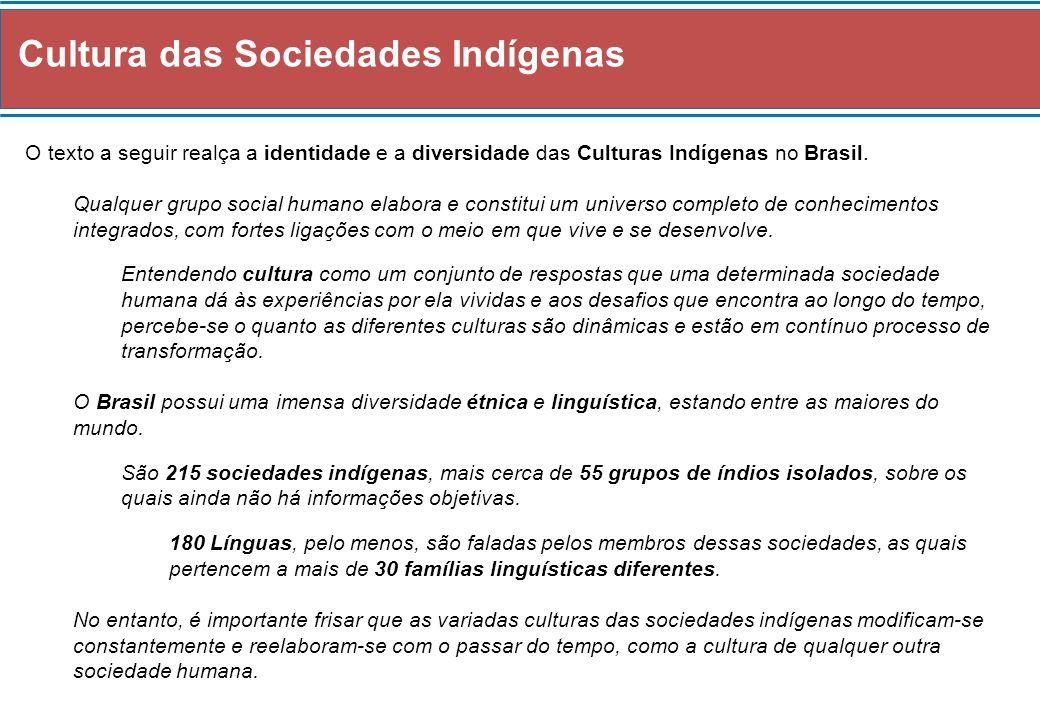 Cultura das Sociedades Indígenas O texto a seguir realça a identidade e a diversidade das Culturas Indígenas no Brasil. Qualquer grupo social humano e