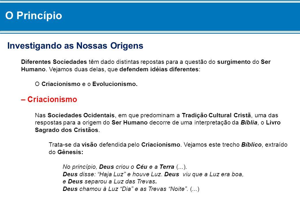 Cultura das Sociedades Indígenas O texto a seguir realça a identidade e a diversidade das Culturas Indígenas no Brasil.