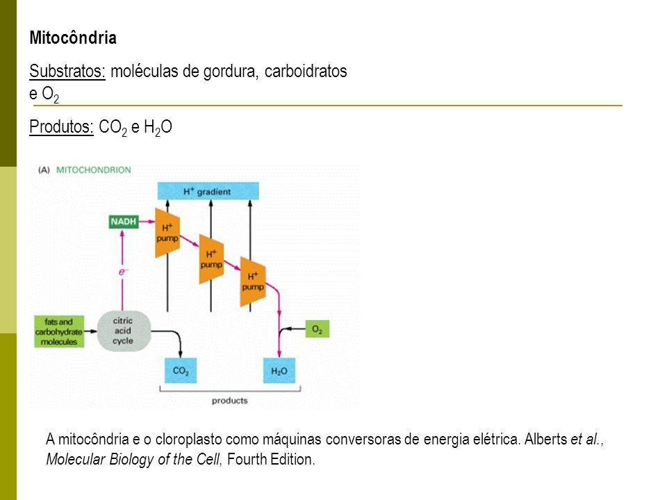 A mitocôndria e o cloroplasto como máquinas conversoras de energia elétrica. Alberts et al., Molecular Biology of the Cell, Fourth Edition. Mitocôndri