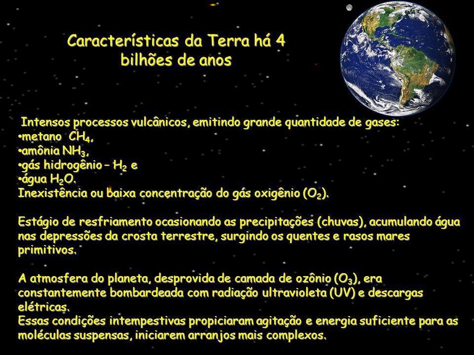 Intensos processos vulcânicos, emitindo grande quantidade de gases: Intensos processos vulcânicos, emitindo grande quantidade de gases: metano CH 4, m