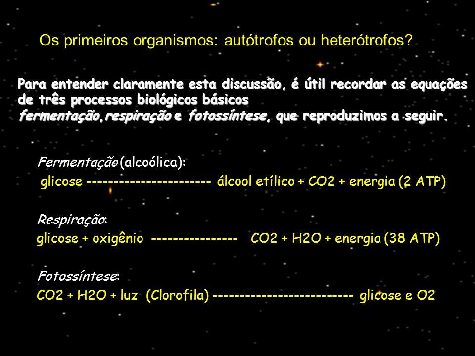 Os primeiros organismos: autótrofos ou heterótrofos? Fermentação (alcoólica): glicose ----------------------- álcool etílico + CO2 + energia (2 ATP) R