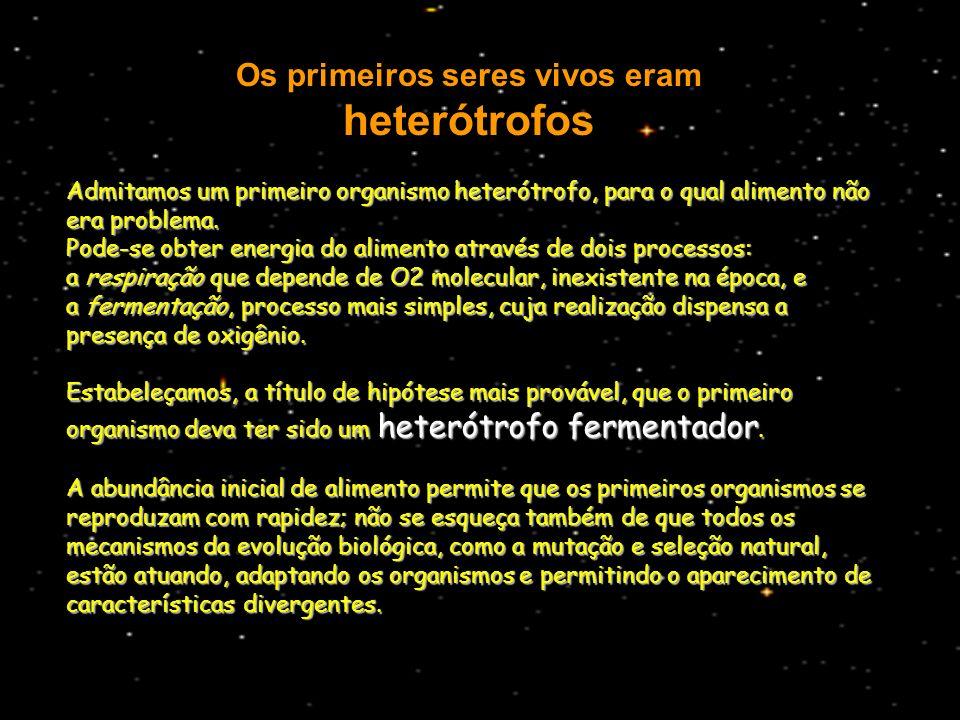 Os primeiros seres vivos eram heterótrofos Admitamos um primeiro organismo heterótrofo, para o qual alimento não era problema. Pode-se obter energia d