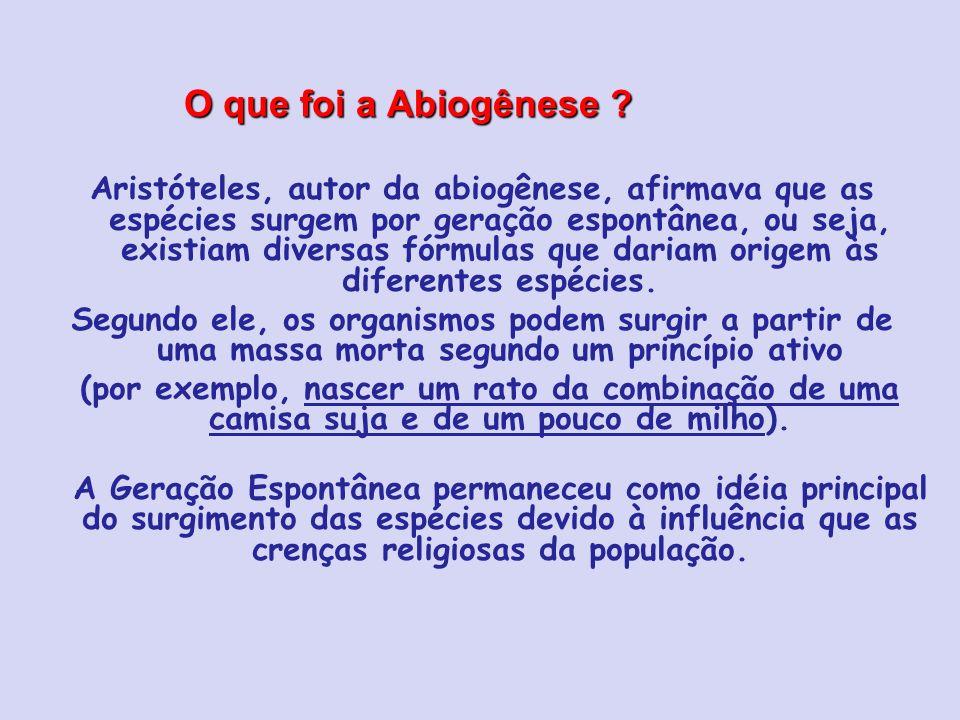 O que foi a Abiogênese ? Aristóteles, autor da abiogênese, afirmava que as espécies surgem por geração espontânea, ou seja, existiam diversas fórmulas