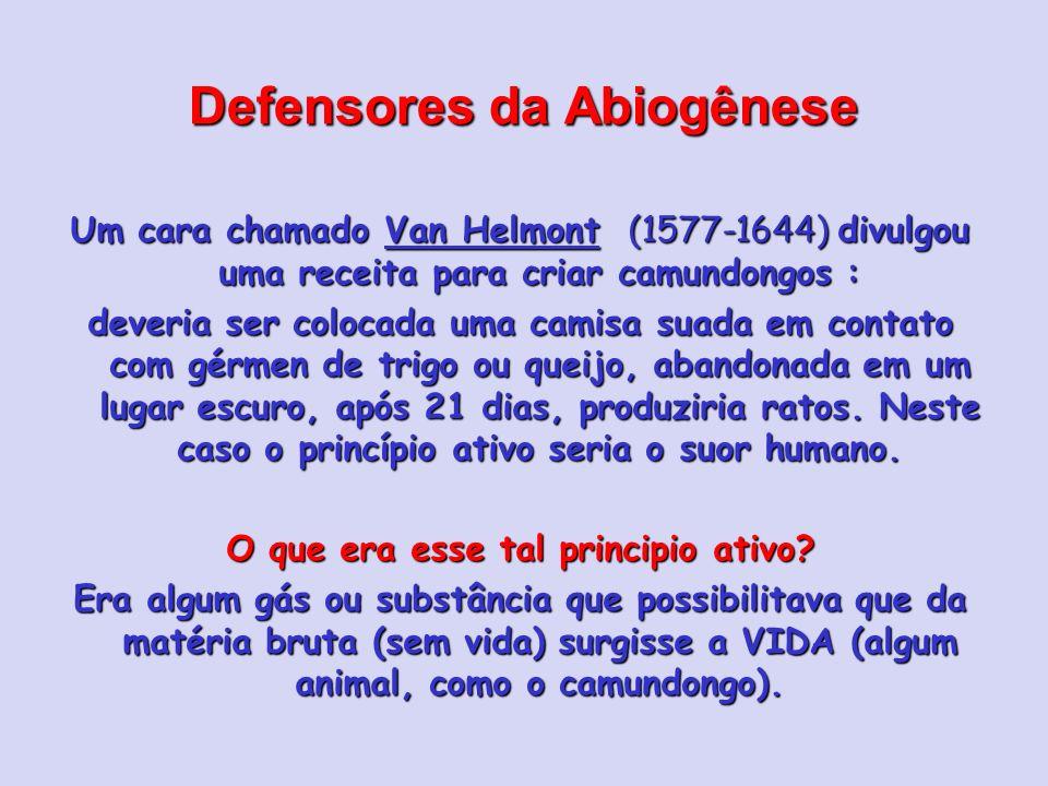 Defensores da Abiogênese Um cara chamado Van Helmont (1577-1644) divulgou uma receita para criar camundongos : deveria ser colocada uma camisa suada e