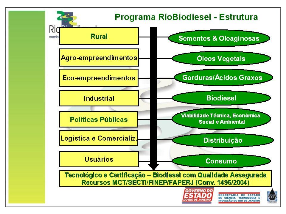 Condições favoráveis do Estado do Rio de Janeiro Pioneirismo e apoio recursos estaduais SECTI/FAPERJ desde 1999 – IVIG/COPPE - FAPERJ Grande concentração de atividades de P&D&I