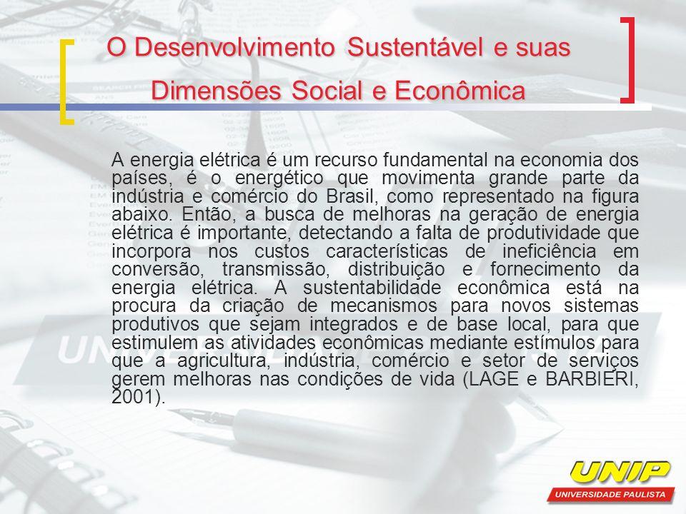 O Desenvolvimento Sustentável e suas Dimensões Social e Econômica A energia elétrica é um recurso fundamental na economia dos países, é o energético q