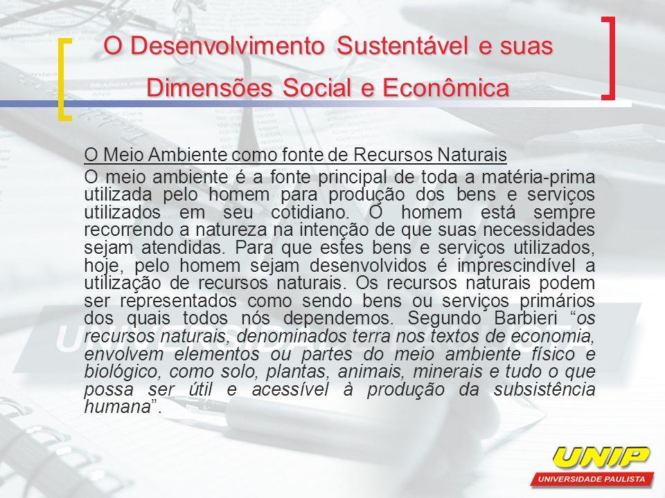 O Desenvolvimento Sustentável e suas Dimensões Social e Econômica O Meio Ambiente como fonte de Recursos Naturais O meio ambiente é a fonte principal