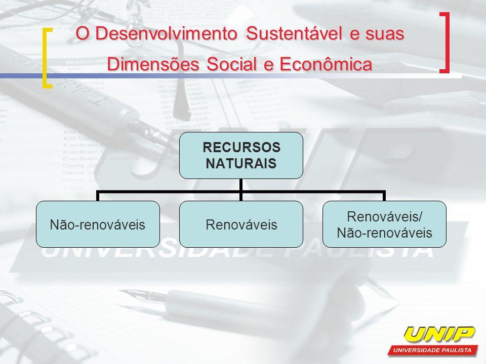 O Desenvolvimento Sustentável e suas Dimensões Social e Econômica RECURSOS NATURAIS Não-renováveisRenováveis Renováveis/ Não-renováveis