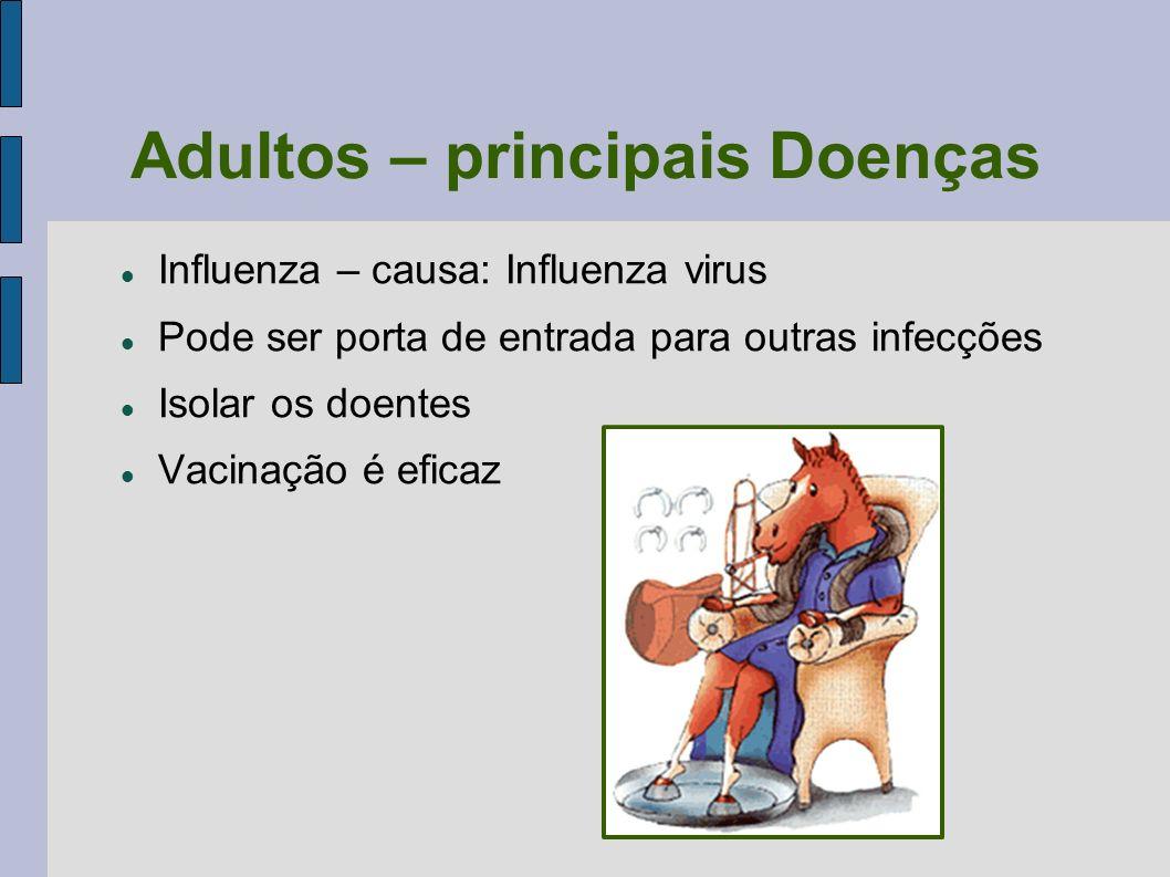 Adultos – principais Doenças Influenza – causa: Influenza virus Pode ser porta de entrada para outras infecções Isolar os doentes Vacinação é eficaz