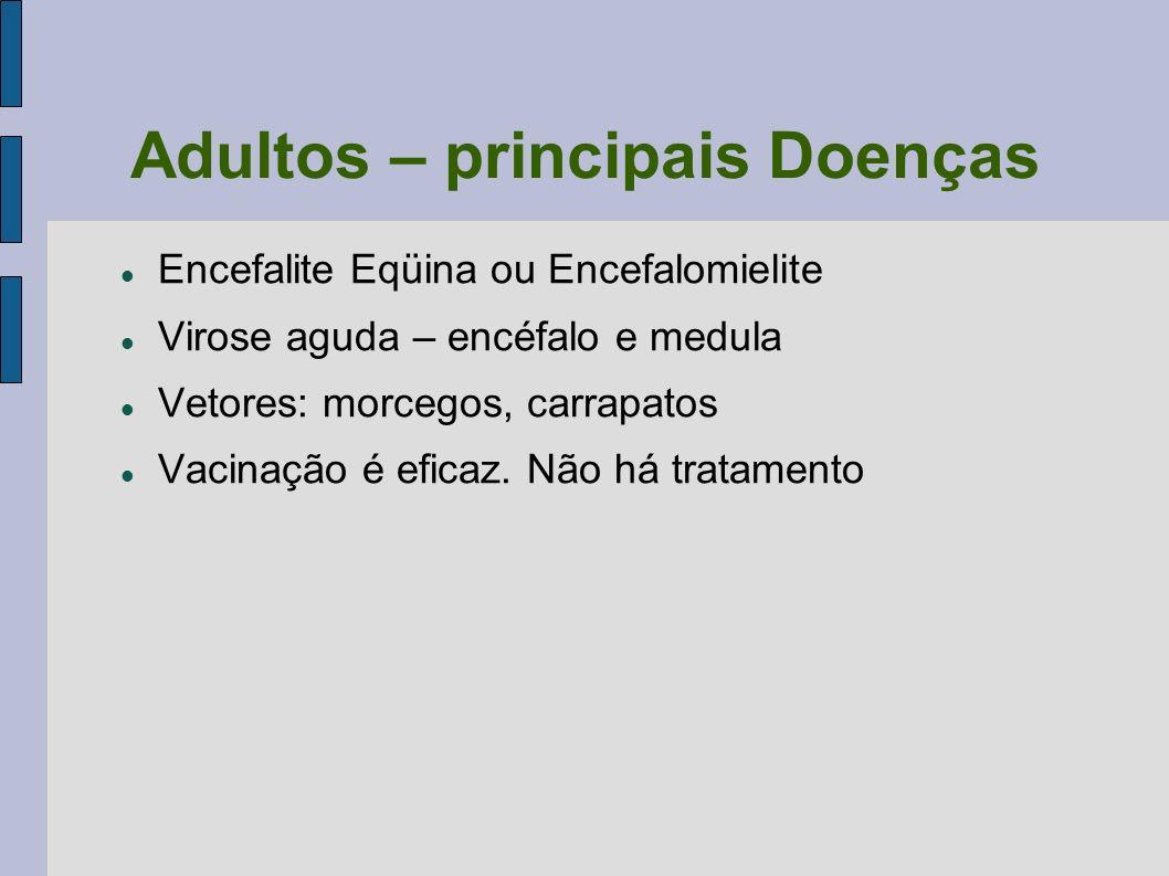 Adultos – principais Doenças Encefalite Eqüina ou Encefalomielite Virose aguda – encéfalo e medula Vetores: morcegos, carrapatos Vacinação é eficaz. N