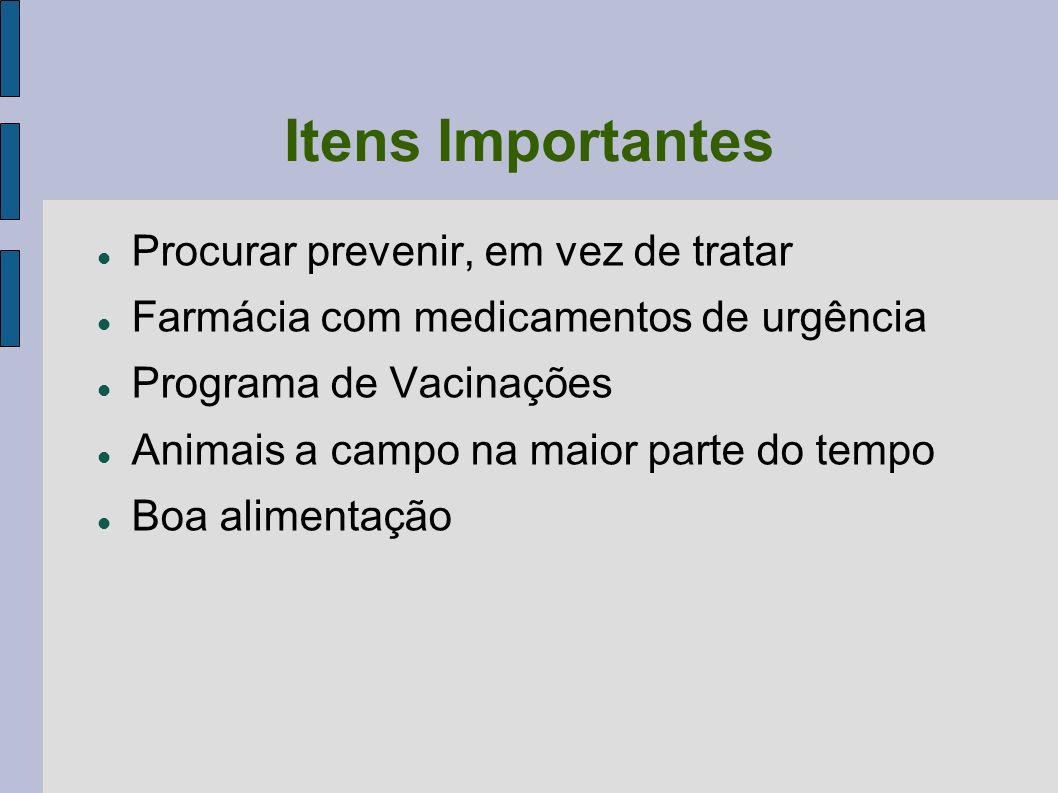 Itens Importantes Procurar prevenir, em vez de tratar Farmácia com medicamentos de urgência Programa de Vacinações Animais a campo na maior parte do t
