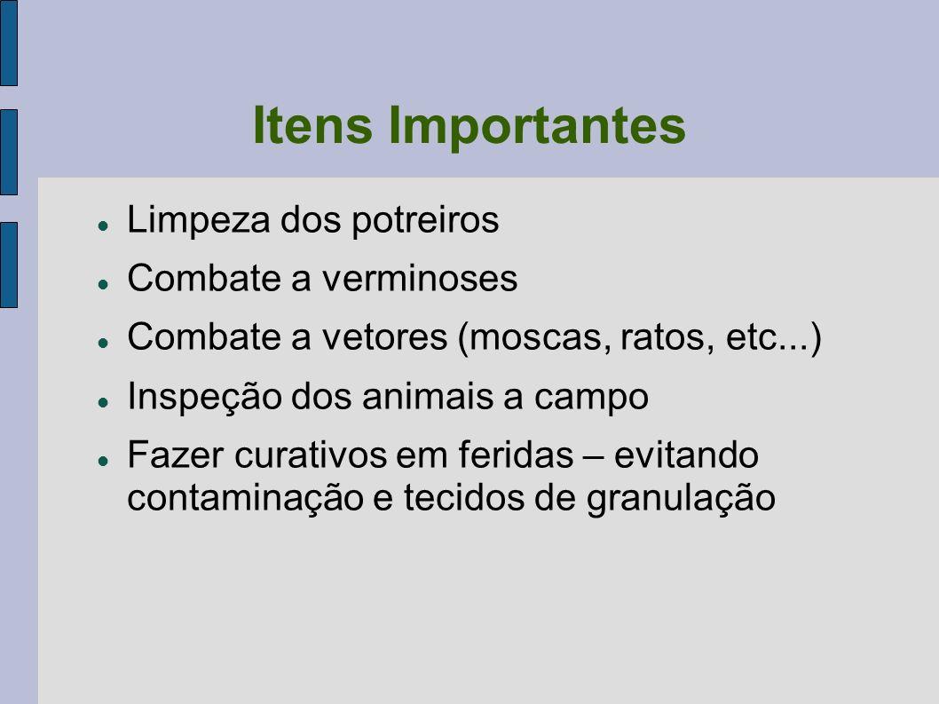 Itens Importantes Limpeza dos potreiros Combate a verminoses Combate a vetores (moscas, ratos, etc...) Inspeção dos animais a campo Fazer curativos em