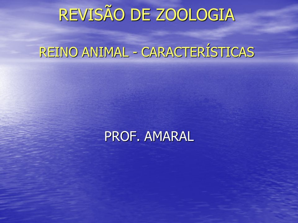 REVISÃO DE ZOOLOGIA REINO ANIMAL - CARACTERÍSTICAS PROF. AMARAL