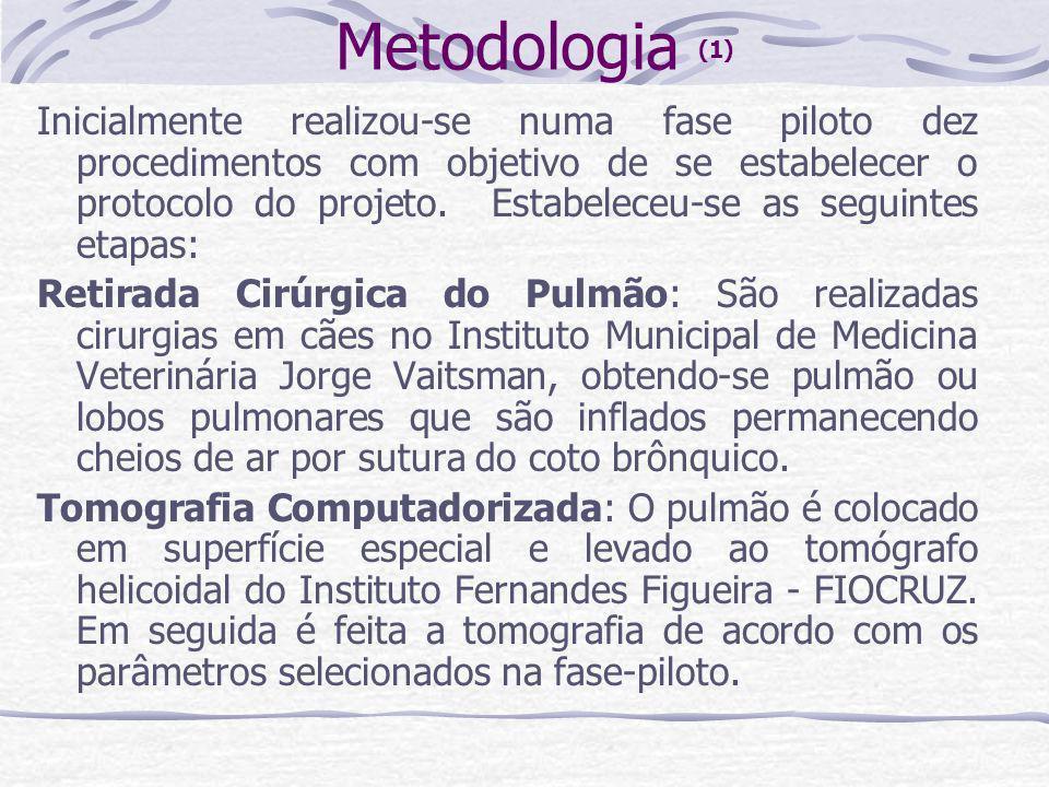 Metodologia (1) Inicialmente realizou-se numa fase piloto dez procedimentos com objetivo de se estabelecer o protocolo do projeto. Estabeleceu-se as s