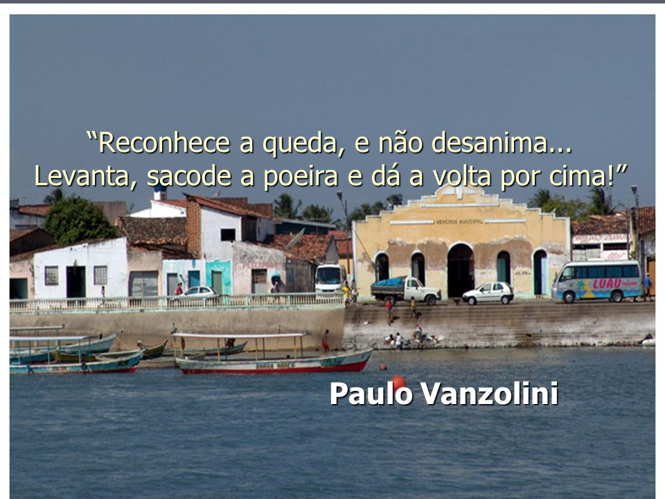Reconhece a queda, e não desanima... Levanta, sacode a poeira e dá a volta por cima! Paulo Vanzolini