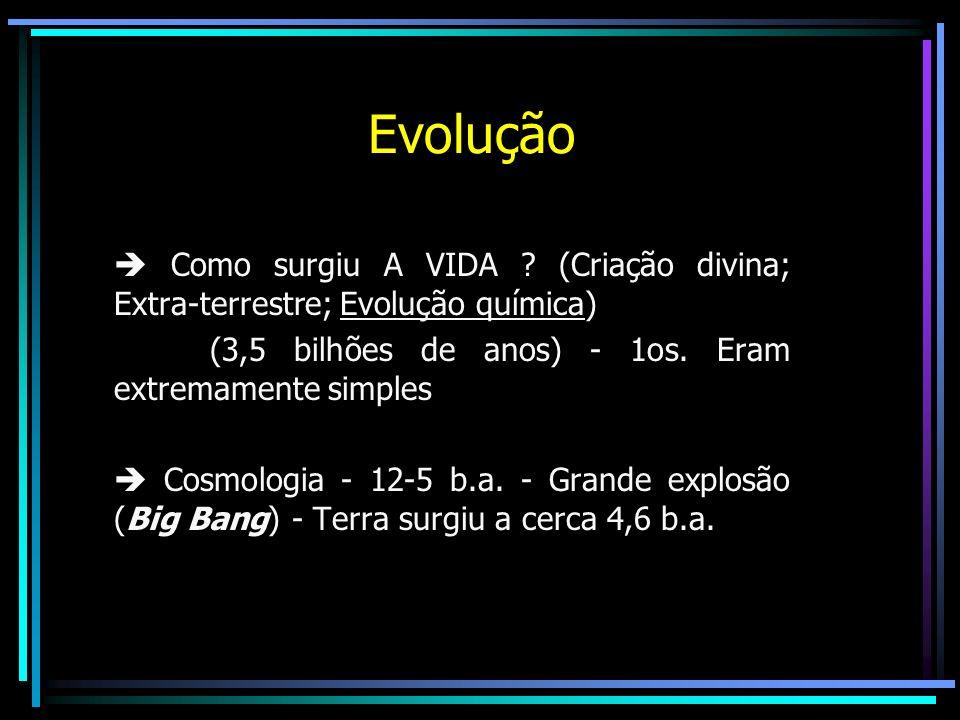 Evolução Como surgiu A VIDA ? (Criação divina; Extra-terrestre; Evolução química) (3,5 bilhões de anos) - 1os. Eram extremamente simples Cosmologia -
