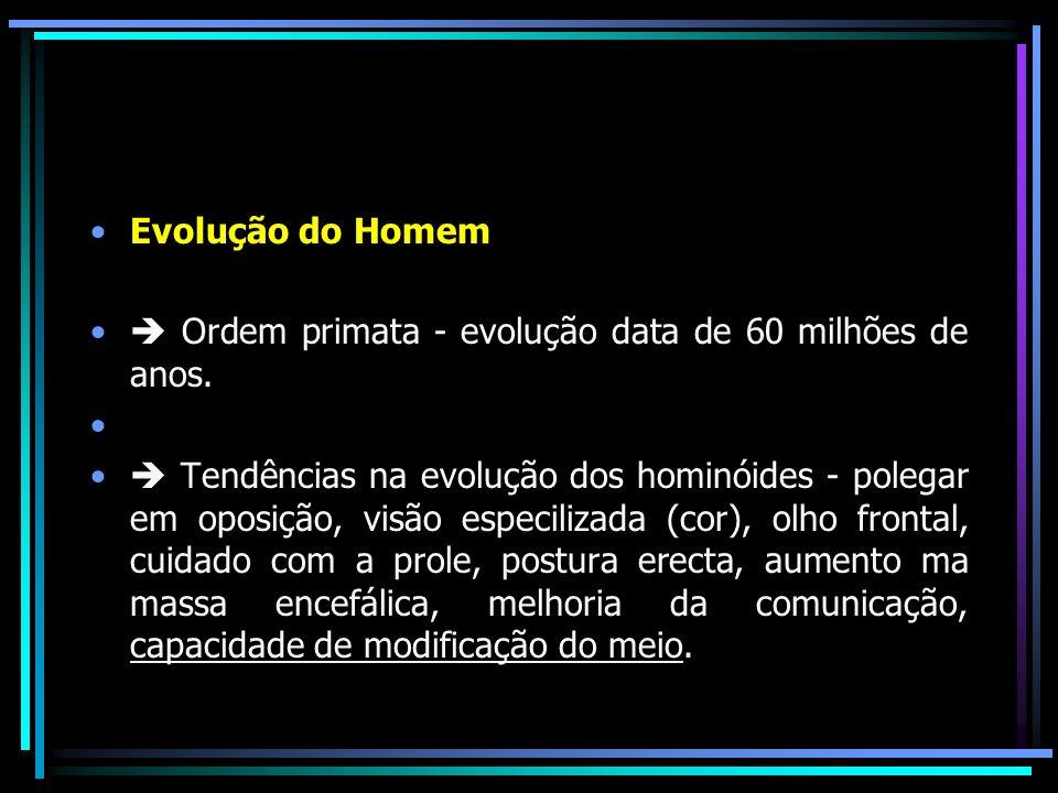 Evolução do Homem Ordem primata - evolução data de 60 milhões de anos. Tendências na evolução dos hominóides - polegar em oposição, visão especilizada
