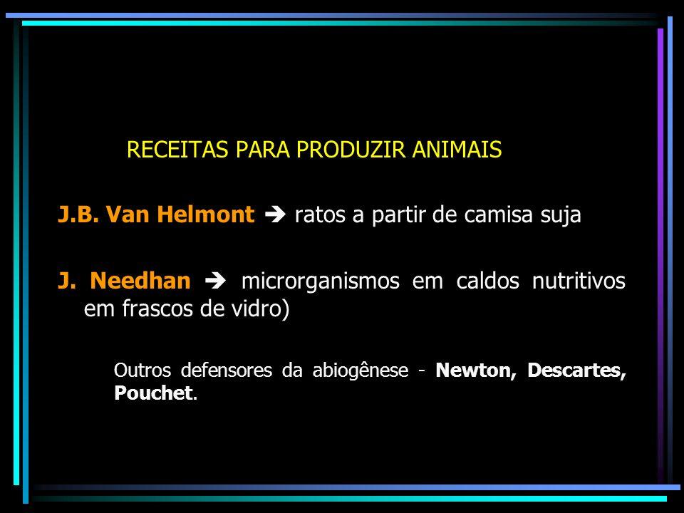 RECEITAS PARA PRODUZIR ANIMAIS J.B. Van Helmont ratos a partir de camisa suja J. Needhan microrganismos em caldos nutritivos em frascos de vidro) Outr