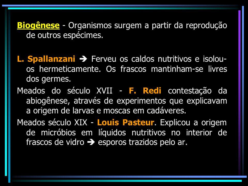 Biogênese - Organismos surgem a partir da reprodução de outros espécimes. L. Spallanzani Ferveu os caldos nutritivos e isolou- os hermeticamente. Os f