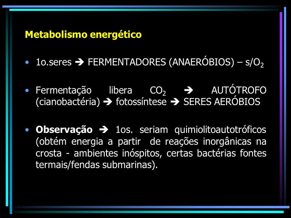 Metabolismo energético 1o.seres FERMENTADORES (ANAERÓBIOS) – s/O 2 Fermentação libera CO 2 AUTÓTROFO (cianobactéria) fotossíntese SERES AERÓBIOS Obser