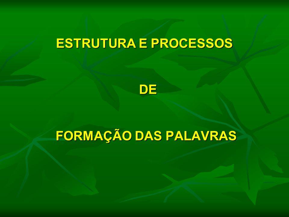 ESTRUTURA E PROCESSOS DE FORMAÇÃO DAS PALAVRAS ESTRUTURA E PROCESSOS DE FORMAÇÃO DAS PALAVRAS