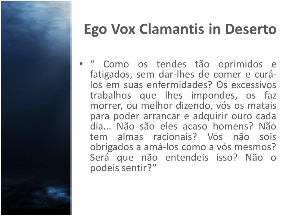 Ego Vox Clamantis in Deserto Como os tendes tão oprimidos e fatigados, sem dar-lhes de comer e curá- los em suas enfermidades? Os excessivos trabalhos