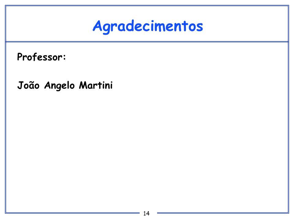 14 Agradecimentos Professor: João Angelo Martini
