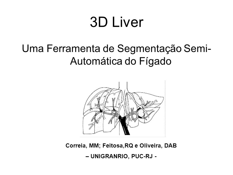 A New Practical 3D Tool for Liver Computer- Assisted Operation Planning.