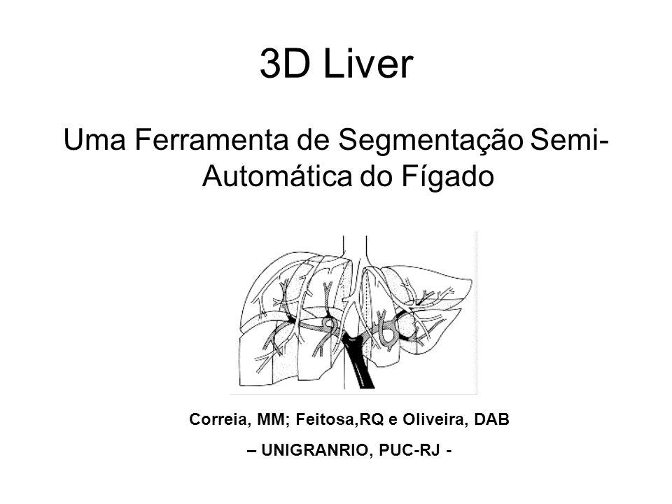 3D Liver Uma Ferramenta de Segmentação Semi- Automática do Fígado Correia, MM; Feitosa,RQ e Oliveira, DAB – UNIGRANRIO, PUC-RJ -