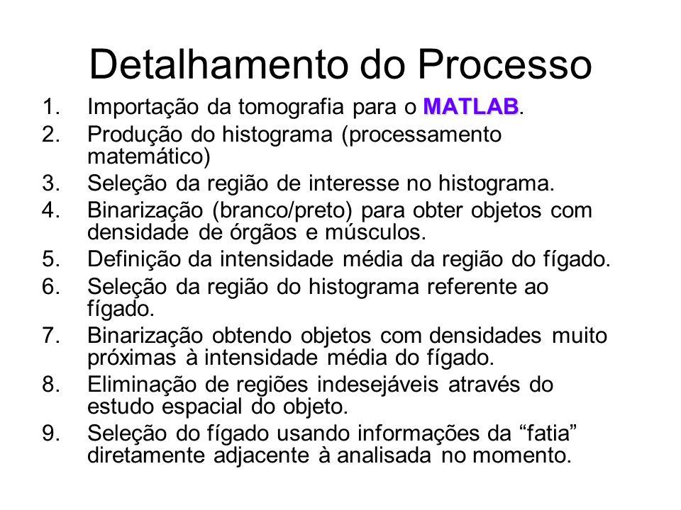 Detalhamento do Processo MATLAB 1.Importação da tomografia para o MATLAB.
