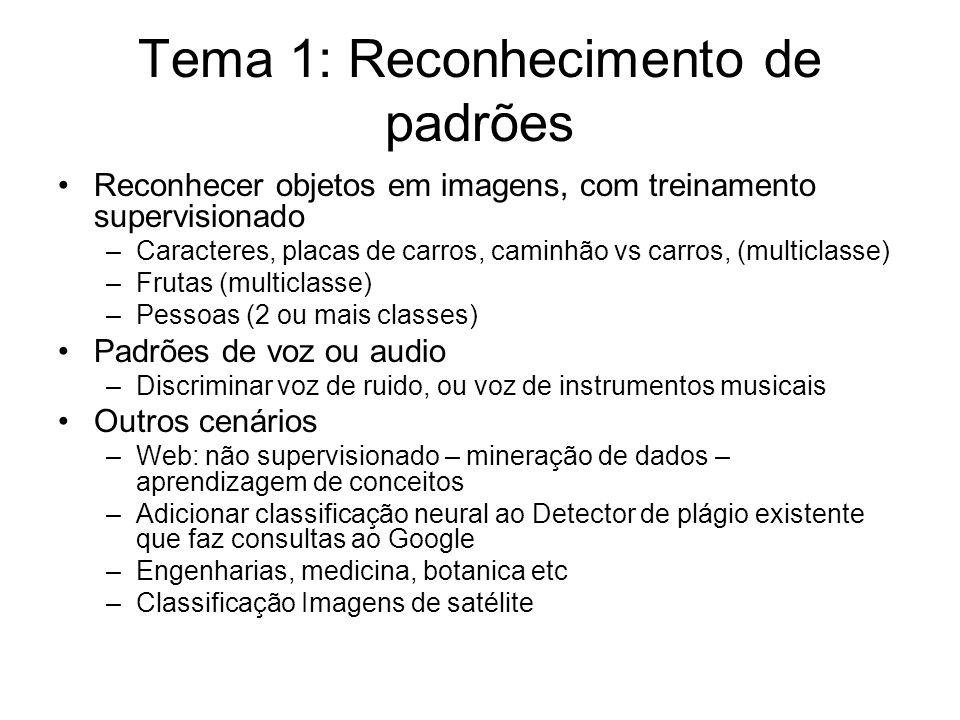 Tema 1: Reconhecimento de padrões Reconhecer objetos em imagens, com treinamento supervisionado –Caracteres, placas de carros, caminhão vs carros, (multiclasse) –Frutas (multiclasse) –Pessoas (2 ou mais classes) Padrões de voz ou audio –Discriminar voz de ruido, ou voz de instrumentos musicais Outros cenários –Web: não supervisionado – mineração de dados – aprendizagem de conceitos –Adicionar classificação neural ao Detector de plágio existente que faz consultas ao Google –Engenharias, medicina, botanica etc –Classificação Imagens de satélite