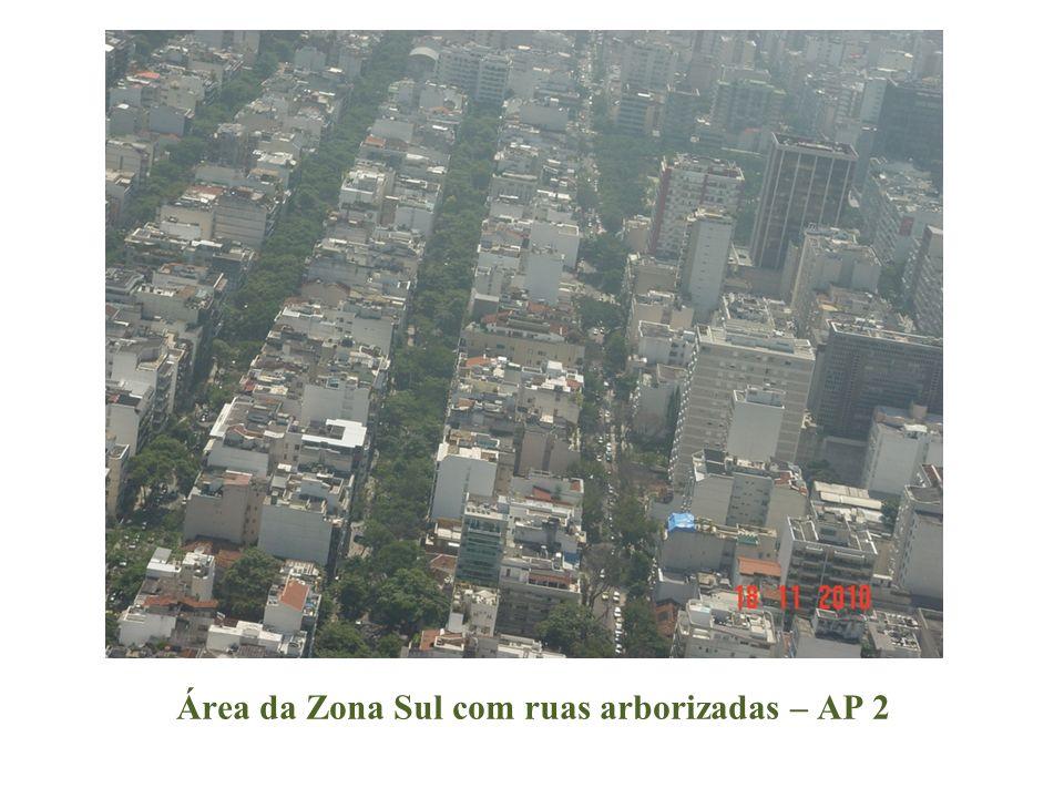 Área da Zona Sul com ruas arborizadas – AP 2