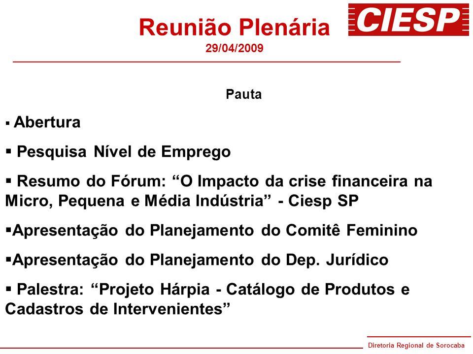 Diretoria Regional de Sorocaba 80 anos Reunião Plenária 29/04/2009 Pauta Abertura Pesquisa Nível de Emprego Resumo do Fórum: O Impacto da crise financ