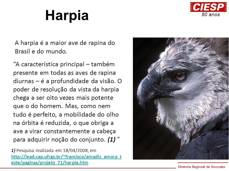 Diretoria Regional de Sorocaba 80 anos Harpia A harpia é a maior ave de rapina do Brasil e do mundo. A característica principal – também presente em t