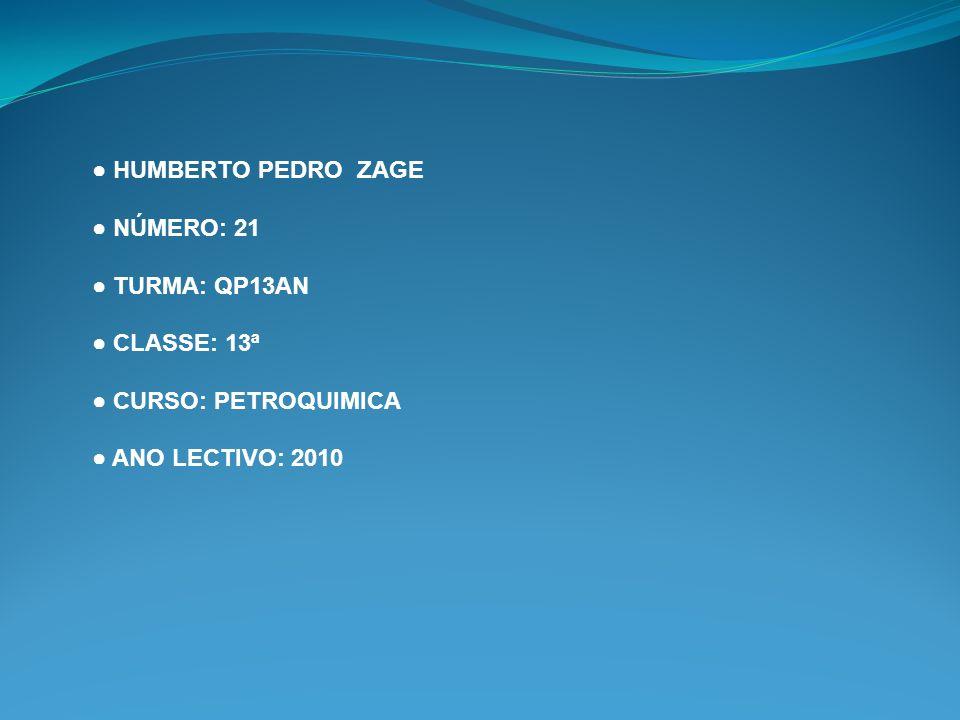 HUMBERTO PEDRO ZAGE NÚMERO: 21 TURMA: QP13AN CLASSE: 13ª CURSO: PETROQUIMICA ANO LECTIVO: 2010