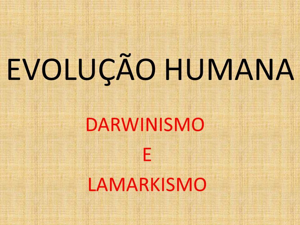 EVOLUÇÃO HUMANA DARWINISMO E LAMARKISMO