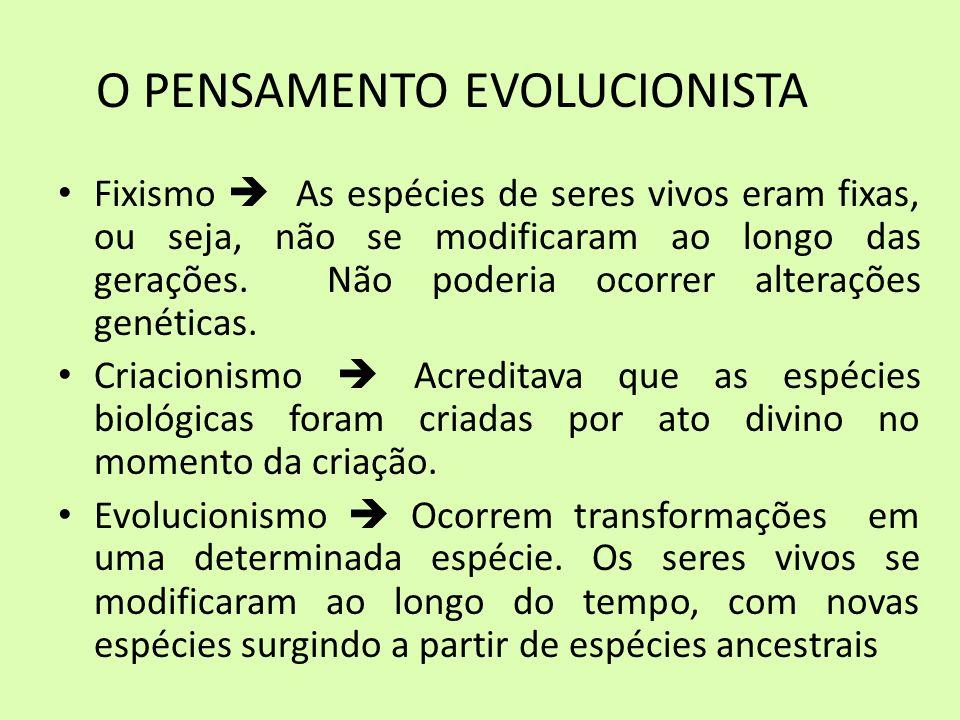 O PENSAMENTO EVOLUCIONISTA Fixismo As espécies de seres vivos eram fixas, ou seja, não se modificaram ao longo das gerações. Não poderia ocorrer alter