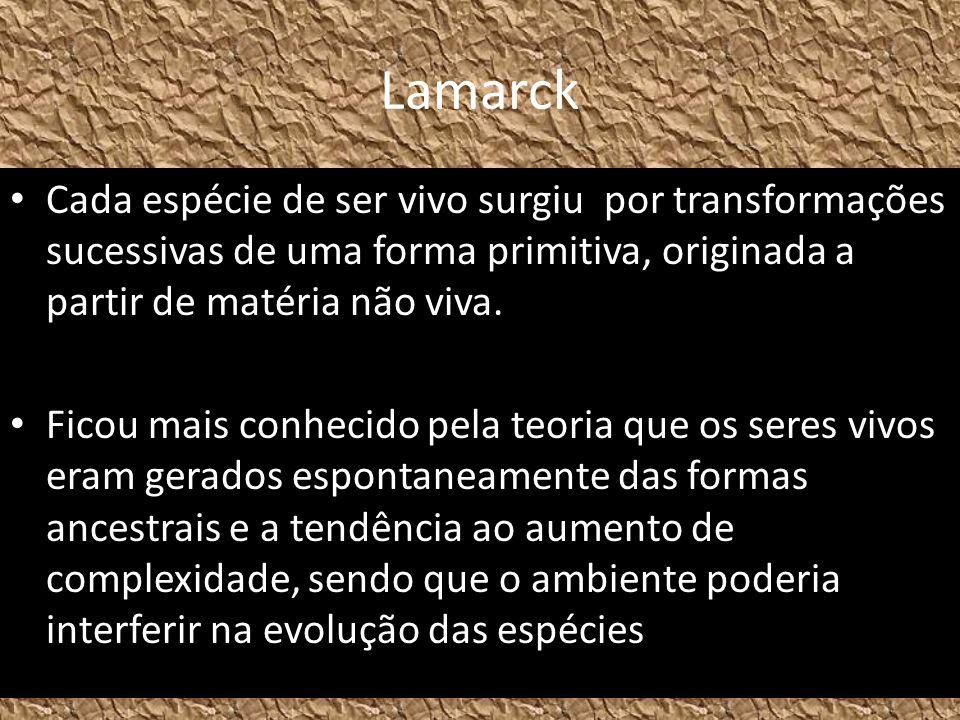 Lamarck Cada espécie de ser vivo surgiu por transformações sucessivas de uma forma primitiva, originada a partir de matéria não viva. Ficou mais conhe