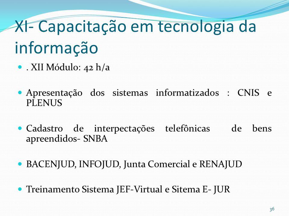 XI- Capacitação em tecnologia da informação.